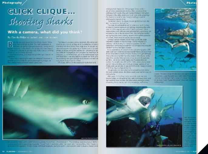 BITTENBYSHARKS, ARTICLES